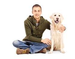 Antrag Auf Hundehaltung In Einer Mietwohnung
