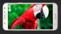 Samsung Galaxy J5 explodiert